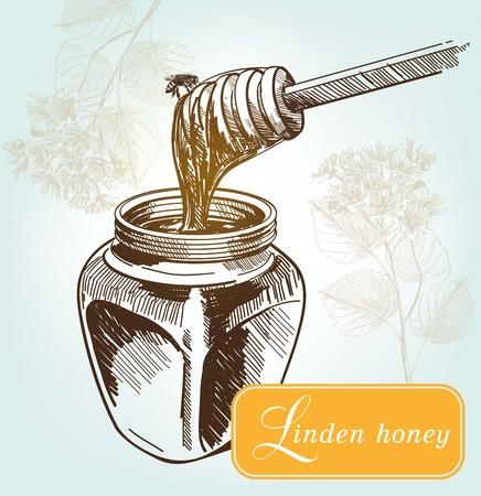lindeboom: het proeven van de honing uit de bloemen van een linde. Hand getrokken illustraties