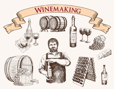 wine making: the production of sparkling wines. set of vector sketches