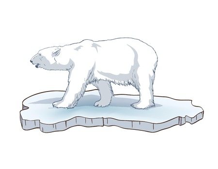 floe: polar bear. Hand drawn illustrations. Vector sketch Illustration
