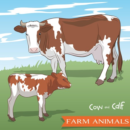 color vector illustration of a cow and her calf grazing in the meadow Ilustração