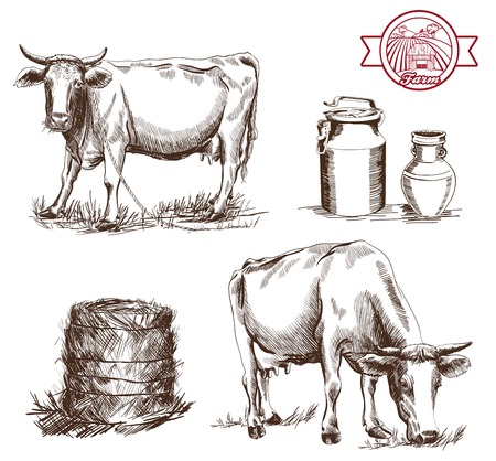 young cow: two cows and dairy products set of vector sketches on a white background