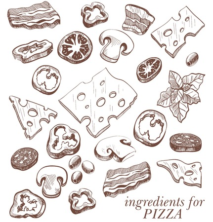parmesan: Ingredients for pizza set of vector sketches on a white background Illustration