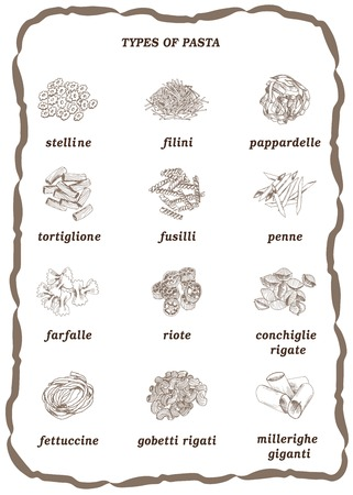 types of pasta set of vector sketches on a white background