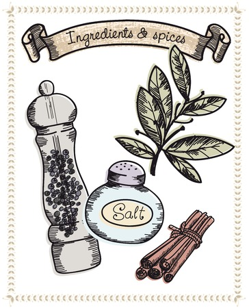 pepperbox: natural spices set of vector sketches on a grey background