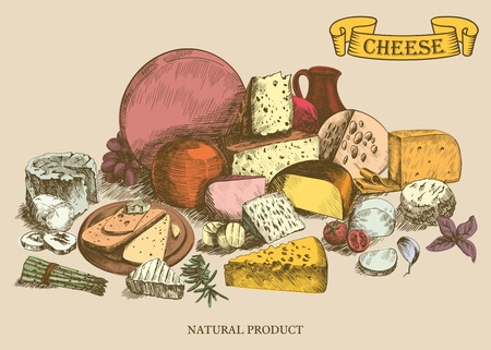 milk products: cheesemaking various types of cheese set of vector sketches on a white background