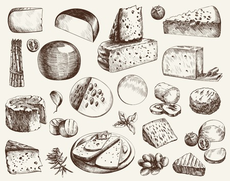 sketch: cheesemaking various types of cheese set of vector sketches on a white background