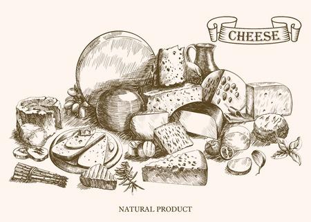흰색 배경에 벡터 스케치 치즈 세트의 다양한 종류의 치즈 제조 일러스트