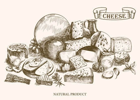 swiss cheese: cheesemaking various types of cheese set of vector sketches on a white background