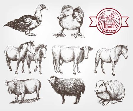 농장 동물입니다. 흰색 배경에 벡터 스케치 설정 일러스트