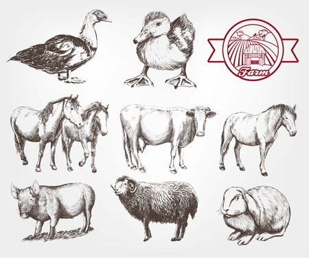farm animals. set of vector sketches on a white background Illustration