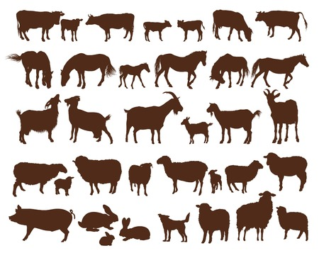 barnyard: farm animals. set of vector icons on a white background