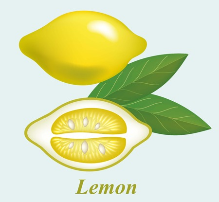 nutritive: illustrations of beautiful yellow lemon fruits Illustration