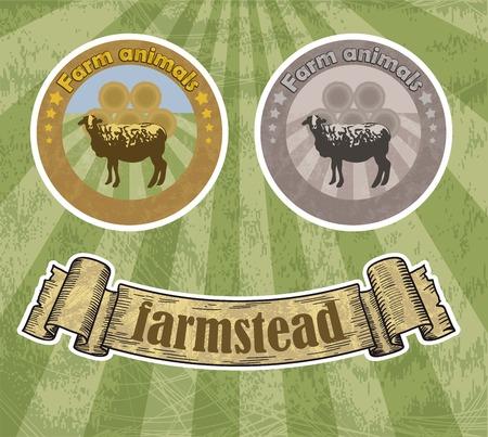 ewe: sheep breeding. vector sketch on a green background Illustration