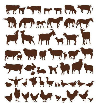 animales de granja. conjunto de iconos vectoriales sobre un fondo blanco