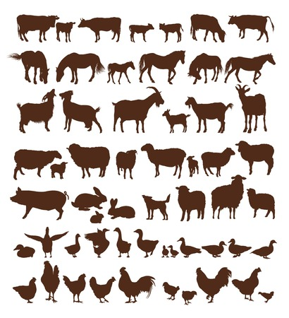 farm animals. set of vector icons on a white background