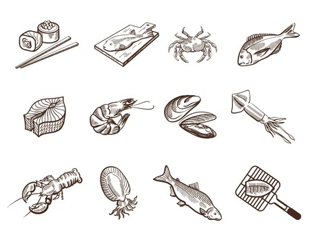 seafood background: Collection foodstuffs of seafood icons on white background