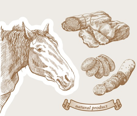 horse meat: The horse is looking from the corner and  natural products which prepared from horse meat Illustration