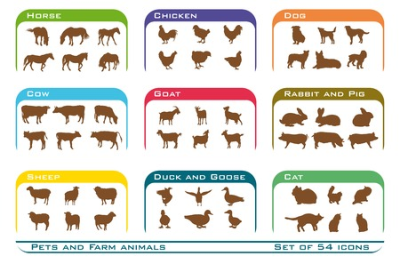 big dog: nine groups of  pets and farm animals. Set of  fifty four color vector icons on white background Illustration