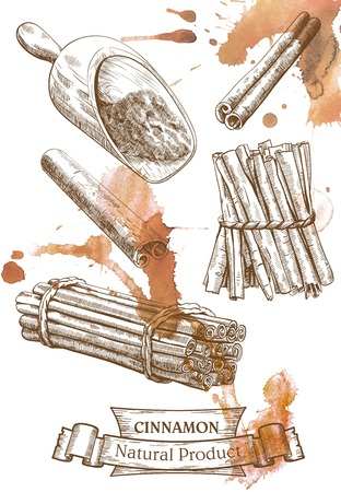 smears: Detailed image of cinnamon set which located on the watercolor brown smears Illustration