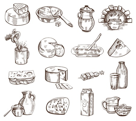 milk products: Vector hand drawn milk products set on white background