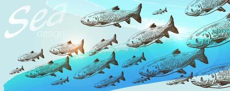 shoal: Shoal of  fishes on blue horizontal background Illustration