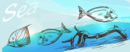 dorado: three sea fish on beautiful blue background Illustration