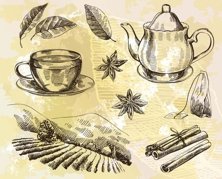 tea plantations: Vector hand drawn tea set on paint background Illustration