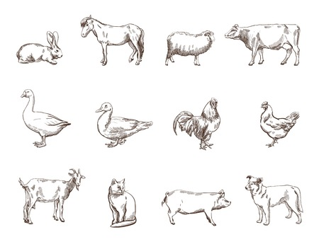 Vector schets van twaalf boerderij dieren silhouet