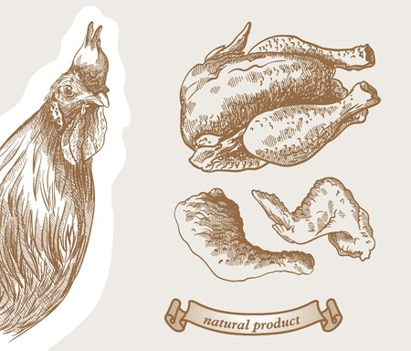 chicken: Rooster peeking out from behind a corner and poultry products Illustration