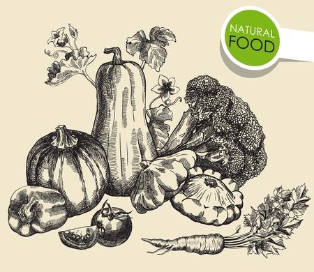 still: Still life of vegetables. sketch made by hand