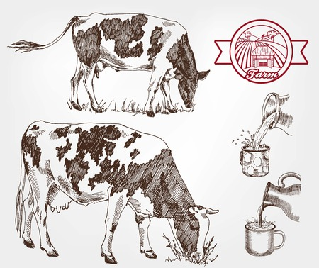 foodstuff: breeding cows. set of sketches made by hand Illustration