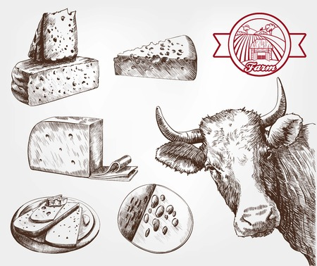 food industry: breeding cows. set of sketches made by hand Illustration