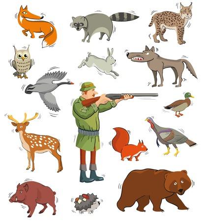 animales silvestres: cazador y animales salvajes. iconos de colores en el fondo blanco Vectores