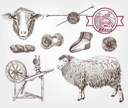 ovejas bebes: cría de ovejas. conjunto de bocetos hechos a mano Vectores