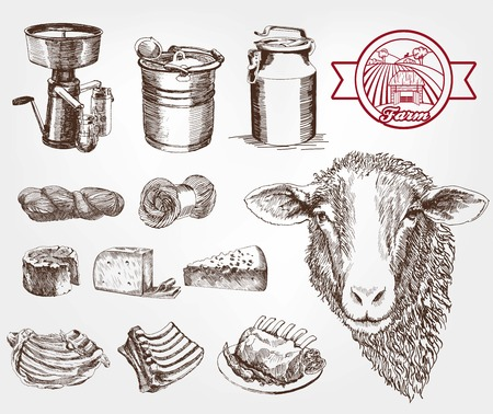 pecora: allevamento di pecore. set di schizzi fatti a mano Vettoriali