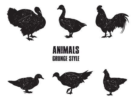 cock duck: farm animals. set of vector icons on a white background