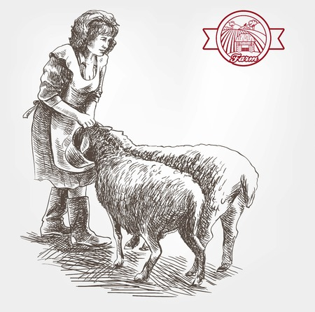 yeanling: woman farmer feeding sheep. sketch made by hand on a white background Illustration