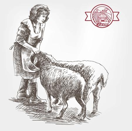 pet breeding: woman farmer feeding sheep. sketch made by hand on a white background Illustration