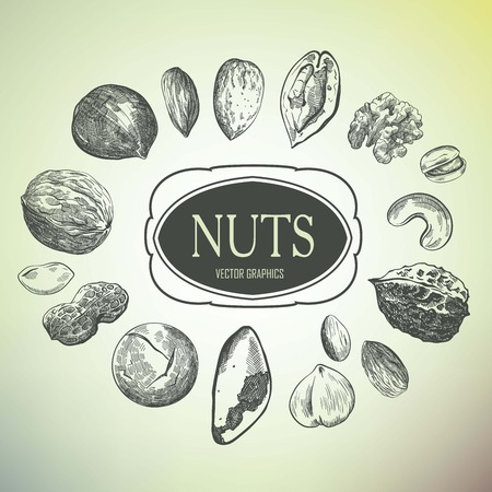 pistachios: hand drawn sketches of various kinds of nuts on a gray background