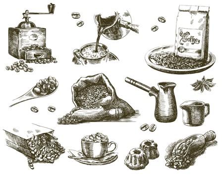 Kompilacja szkiców naturalnych ziaren kawy na białym tle
