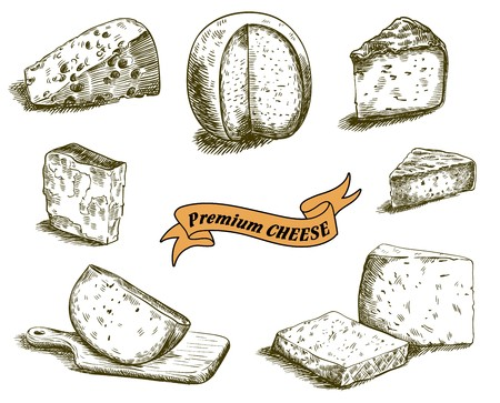 hand drawn sketches of natural cheese on a white background
