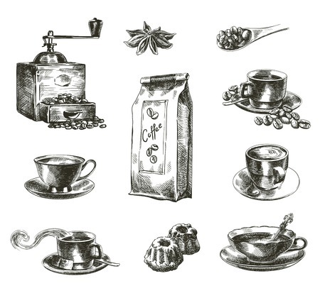 anise: compilation of hand drawn sketches of natural coffee on a white background