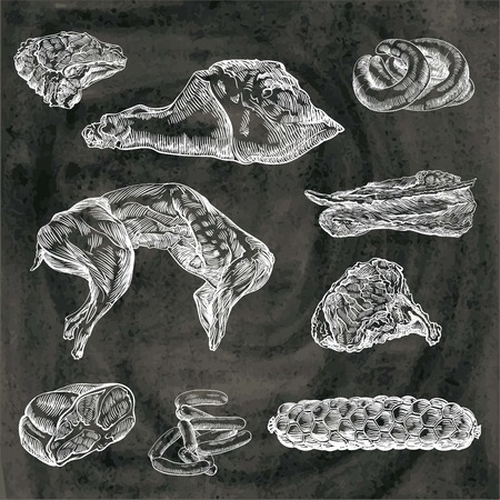 compilation of hand drawn sketches of natural meat and products made from it on a black background Illustration