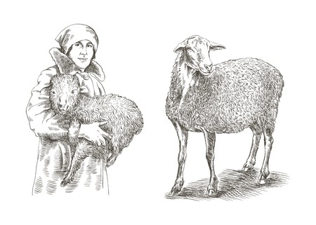 yeanling: Female farmer holding a lamb in his hands. sketch made by hand on a white background