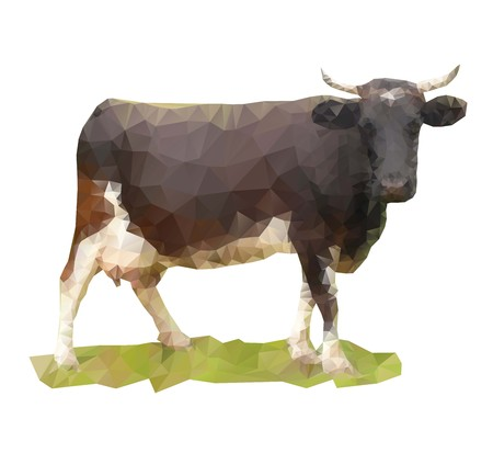 ruminant: Low poly cow on a white background