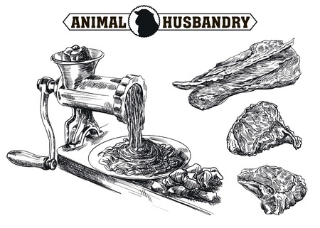 raw beef: hand drawn sketch outdated grinder in the processing of meat Illustration