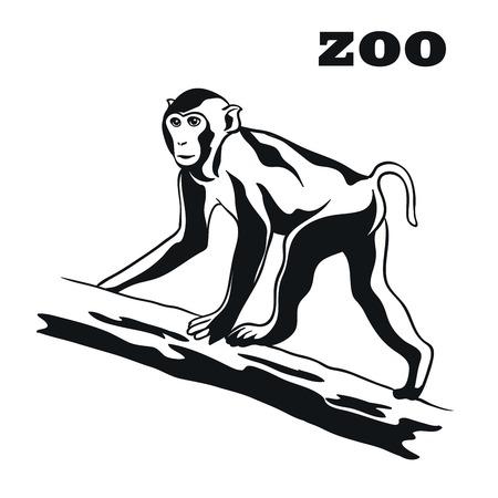 primate: Monkey. Black emblem on a white background