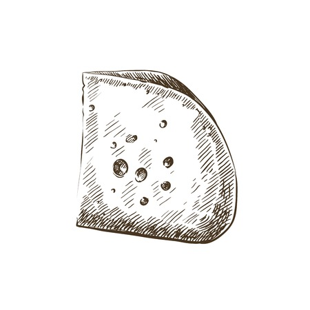 cheese slice. hand drawn sketch on a white background