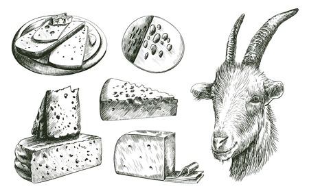 farming. goat breeding. livestock. cheesemaking. set of sketches on a white background Illustration