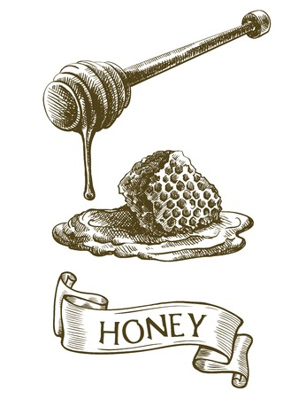 Dipper stick with dripping honey and honeycomb. Illustration